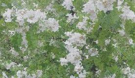 Der abstrakte Stylization eines blühenden Obstbaumes Lizenzfreie Stockfotos
