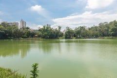 Der Aclimacao-Parkseeblick in Sao Paulo Lizenzfreie Stockbilder