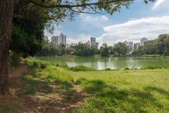Der Aclimacao-Parkseeblick in Sao Paulo Stockbilder