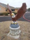 Der Adler auf der Straße Lizenzfreie Stockbilder