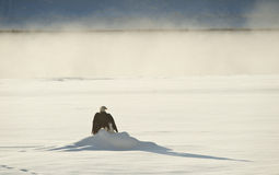 Der Adler sitzt auf Schnee auf dem gefrorenen Fluss, Stockfotografie
