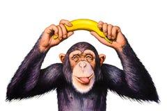 Der Affe, der Banane hält, überreicht seinen Kopf Lizenzfreie Stockfotos