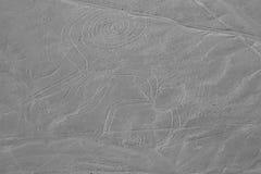 Der Affe - Nasca-Linien - Peru Stockbild