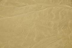 Der Affe - Nasca-Linien - Peru Lizenzfreie Stockfotos