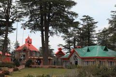 Der Affegotttempel von Shimla Lizenzfreies Stockbild