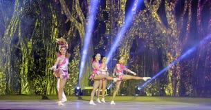 Der akrobatische Tanz Stockbilder
