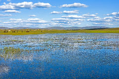 Der allgemeine See in WulanBu alles alte Schlachtfeld der Wiese Lizenzfreie Stockfotografie
