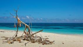 Der Altar auf dem Strand Stockfoto