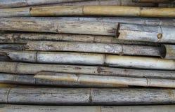 Der alte Bambus Lizenzfreies Stockfoto
