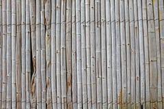Der alte Bambuswandhintergrund Stockbilder