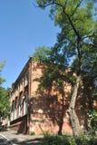 Der alte Baum dazu des alten Gebäudes Lizenzfreies Stockfoto