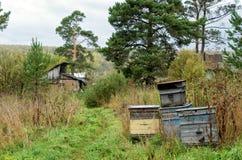 Der alte Bienenstock am Dorfhof Stockfoto