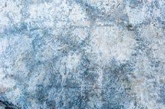 der alte blaue Zementbeschaffenheitshintergrund Abbildung der roten Lilie Stockbild