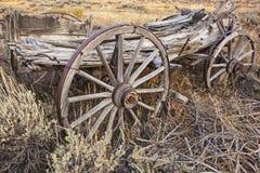 Bauernhof- und Ranchlastwagen in der weisen Bürste Lizenzfreies Stockfoto