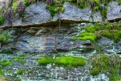 Der alte Felsen im Holz Moos-gewachsen Lizenzfreie Stockfotos