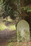 Der alte Kirchhof auf Southampton-Common lizenzfreie stockfotos