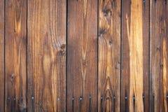 Der alte lackierte Baum Stockfoto