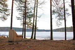 Der alte Lehnsessel im Wald auf dem See-Ufer Lizenzfreies Stockfoto