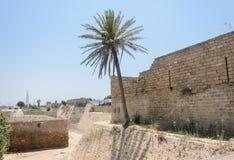 Der alte Park in Caesarea-, Israel Ancient-Festung und in den Palmen Stockbild