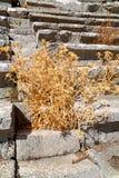 der alte Tempel und die termessos Antalya Stockfoto