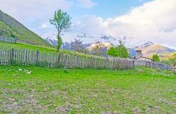 Der alte Zaun Stockbild