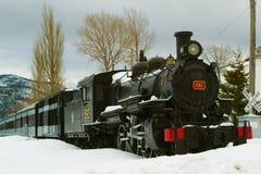 Der alte Zug Stockfotografie