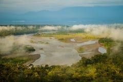 Der Amazonic-Regenwald und -fluß in Ecuador stockbild