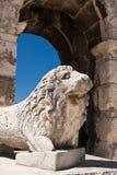 Der Amphitheatre Lizenzfreies Stockfoto