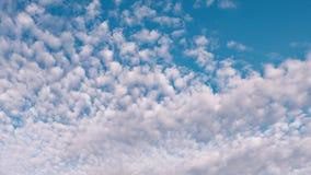 Der Anfang des Frühlinges die Wolken schwimmen gegen den blauen Himmel stock video footage