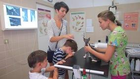 An der Aufnahme in der Veterinärklinik Eine junge Frau, der Inhaber der Katze, demonstriert den Fokus von microsporia auf ihrem S stock video footage
