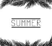 Der Aufschrift Sommer in den Palmblättern Stockfotos