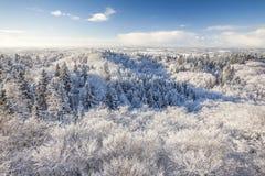 Der Aussichtsturm auf einem Hügel im Winterwald Stockfotografie