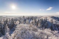 Der Aussichtsturm auf einem Hügel im Winterwald Stockfotos