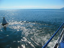 Der Baikalsee-Wellen Lizenzfreie Stockfotografie