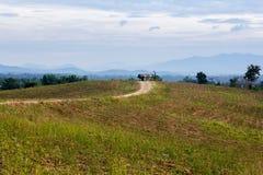 Der Bauernhof auf dem Berg, auf Fertigstellung der Ernte Lizenzfreie Stockbilder