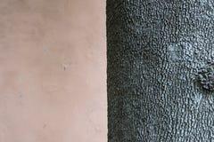 Der Baum Stockfoto