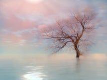 Der Baum in endlosem Lizenzfreie Stockbilder