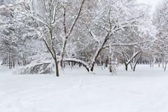 Der Baum fiel unter das Gewicht des Schnees Kleines Haus im Schnee deckte Holz in den Schweizer Alpen ab Lizenzfreies Stockfoto