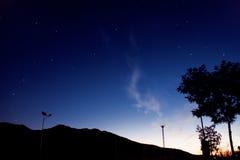 Der Baum gegen den Sternhimmel Lizenzfreies Stockfoto