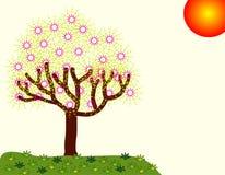 Der Baum mit vielen Blumen Stockfotografie