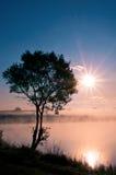 Der Baum nahe dem See auf dem Sonnenaufgang Stockfotos