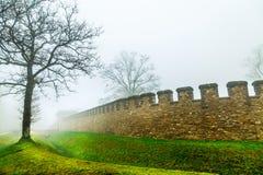Der Baum und historische alte das Rom-Schloss in nebeligen Misty Day Stockfotografie