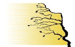 Der Baum verbiegt durch den Wind Stockfoto
