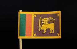 Der Beamte und die Staatsflagge von Sri Lanka auf Zahnstocher auf schwarzem Hintergrund Ein gelbes Feld mit zwei Platten: die kle stockbild