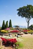 Der beautyful Garten und der blaue Himmel Stockfotos