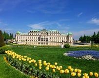 Der Belvedere Wien Stockfotografie