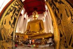 Der berühmte große sitzende Buddha im thailändischen Tempel Lizenzfreie Stockbilder
