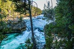 Der berühmte und schöne Yellowstone River in Wyoming lizenzfreies stockfoto