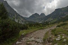 Der Berg, der mit Koniferenwald überwältigt werden, die Lichtung und das Rasthaus in Richtung zu Maliovitza ragen in Rila-Berg em Lizenzfreies Stockbild