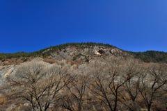 Der Berg in Jiuzhaigou Lizenzfreie Stockbilder